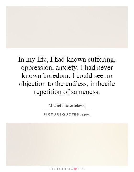 81 Best Michel Houellebecq Images On Pinterest Album Covers   Has No  Objection  Has No Objection