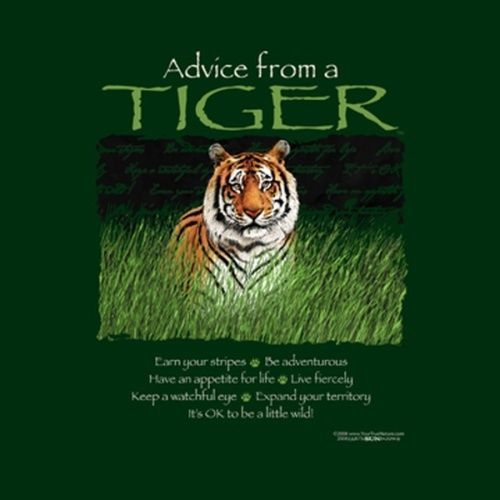 advice from a tiger - Google Search