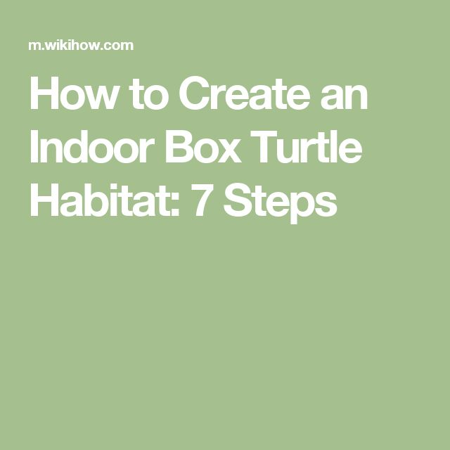 How to Create an Indoor Box Turtle Habitat: 7 Steps