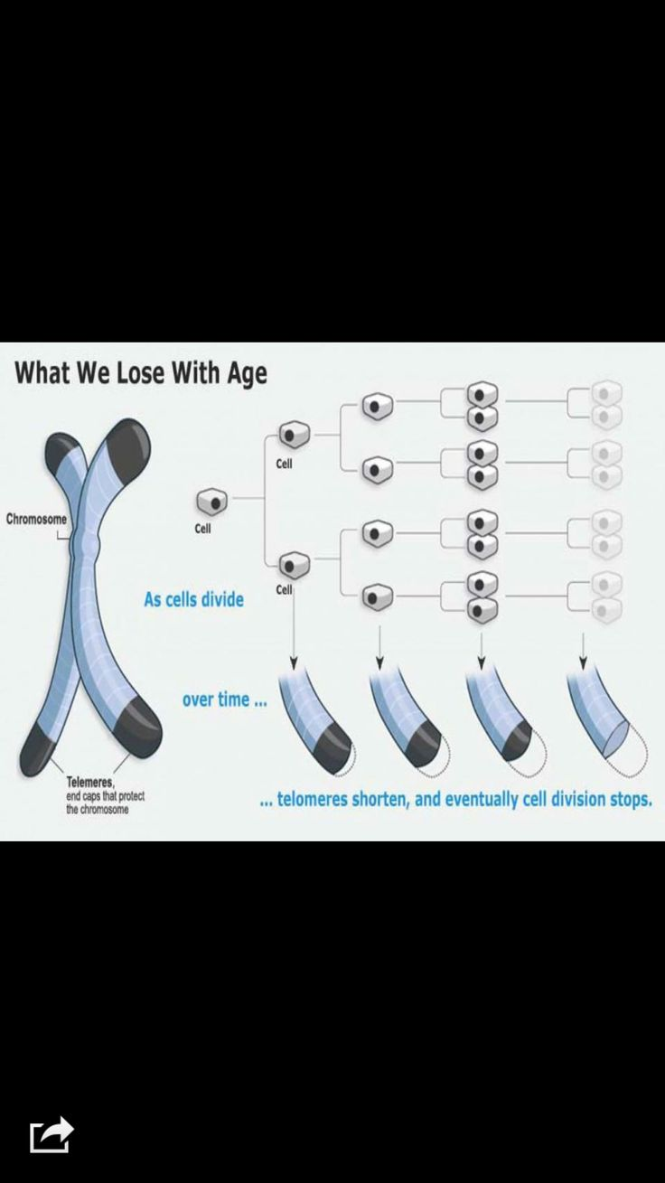 Shortening telomeres and the aging process.  Take Finite to slow down the aging process. The only product able to grow telomeres.