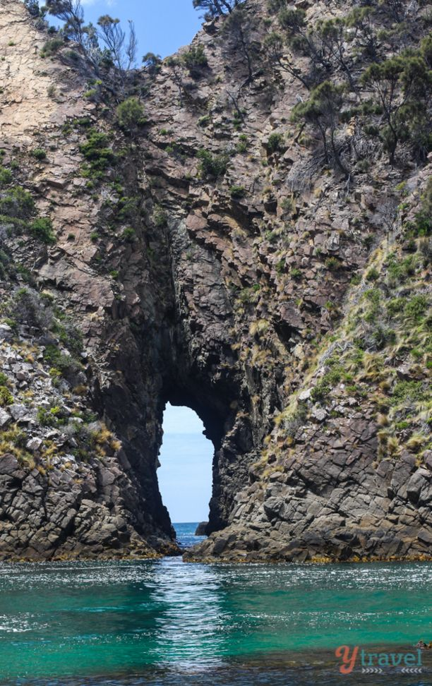 Sea caves on Bruny Island, Tasmania, Australia