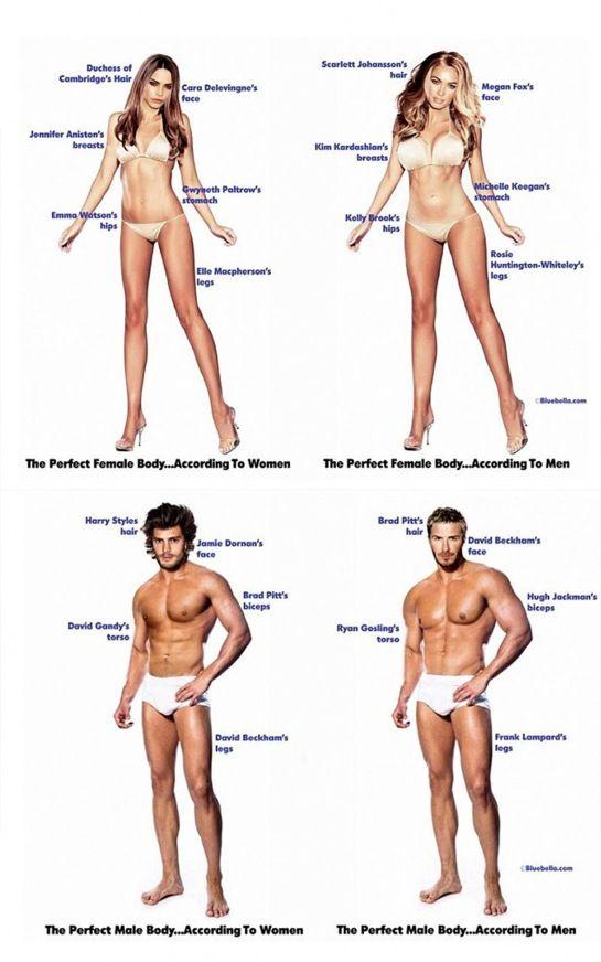 Wie sieht der perfekte Körper aus? Mann und Frau haben eine komplett andere Vorstellung! | LikeMag
