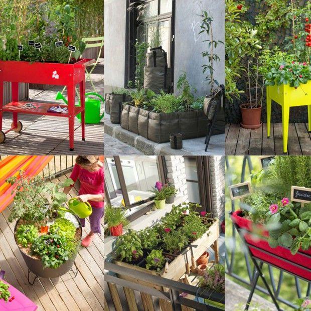 Avec une structure adaptée et quelques coups de pouce pour optimiser l'espace des cultures, vous serez paré(e) pour avoir le plaisir de ramasser vos propres légumes. Suivez le guide. http://www.elle.fr/Deco/Guide-shopping/Tous-les-guides-shopping/petit-potager-2947098