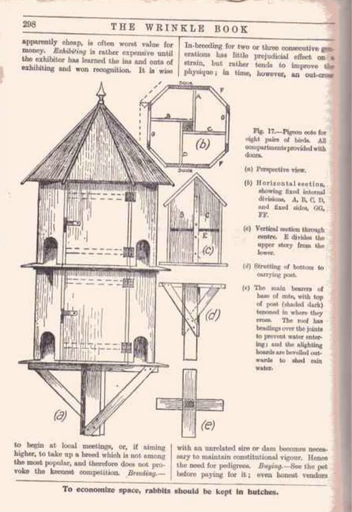 Dovecote Plans | Dovecote anyone have one on here | Gardeners Corner