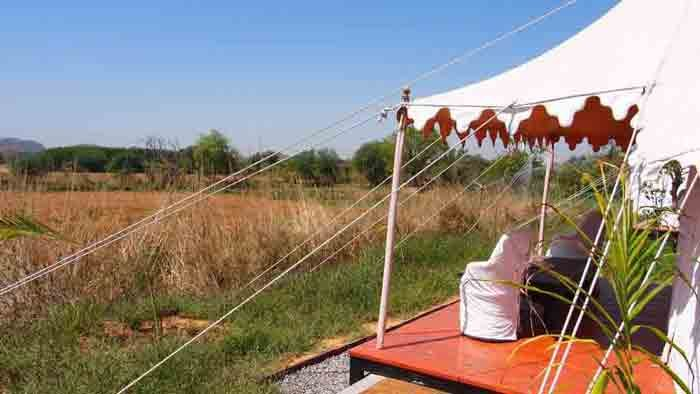 Enjoy a stay in the Wild in Ranthambore #Rajasthan #India
