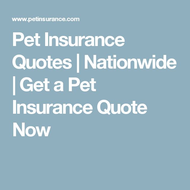 Pet Insurance Quotes   Nationwide   Get a Pet Insurance Quote Now