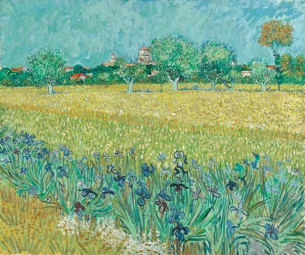 Vincent Van Gogh Field With Irises Near Arles Arles May 1888 Oil On Canvas 54 Cm X 65 Cm Credits In 2020 Artist Van Gogh Vincent Van Gogh Paintings Van Gogh Prints