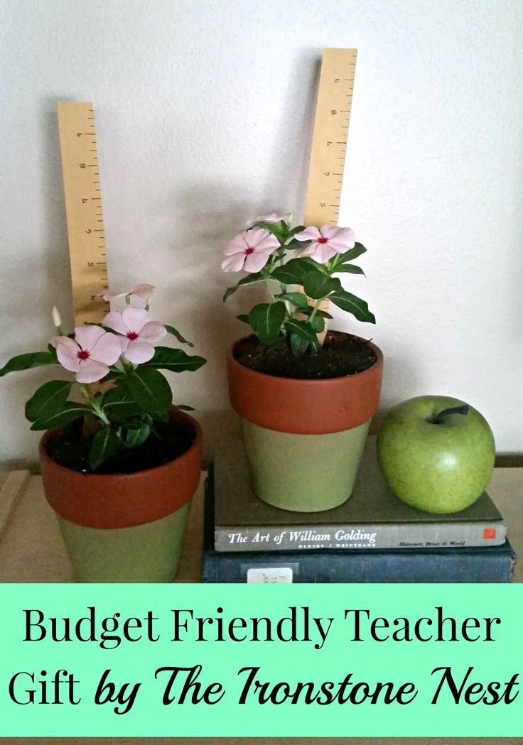 Budget Friendly Teacher Gift | By The Ironstone Nest ...