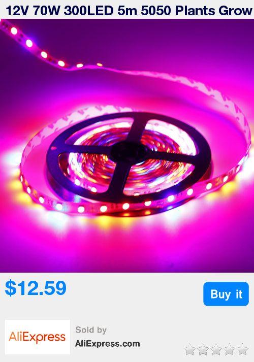 17 Best Ideas About Aquarium Lamp On Pinterest Octopus