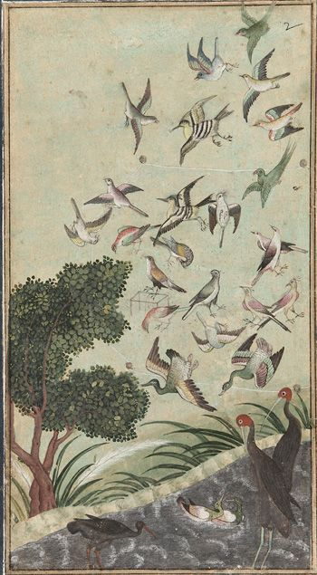 Birds at Baran, possibly from the Babur-nama  late 16th century      Mughal dynasty    Color and gold on paper  H: 17.1 W: 9.5 cm  India