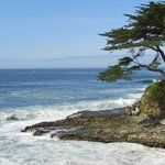 Pacific Coast Highway - Route 1, California: See 1,272 reviews, articles, and 1,822 photos of Pacific Coast Highway - Route 1, ranked No.31 on TripAdvisor among 17,737 attractions in California.
