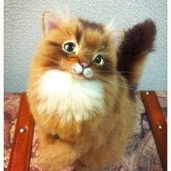 Сомалийский кот шерсть чувствовал животное кукла валяние Искусство кошка кукла куклы интерьер прием