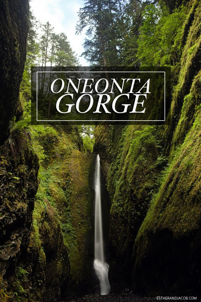 A photo guide of the Oneonta Gorge Hike to Lower Oneonta Falls with tips on what to pack and wear.