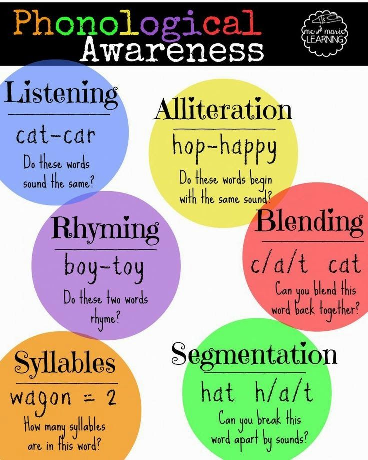 Toad-ally Exceptional Learners: What is Phonological and Phonemic Awareness??
