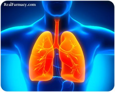 BETA CAROTENE FOUND TO REVERSE LUNG DAMAGE ASSOCIATED WITH COPD - http://fitlife.tv/common-plant-compound-found-to-reverse-lung-damage-associated-with-copd/