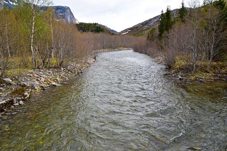 Børelva ett stykke nedenfor Børvatnet     http://www.tursiden.no/borelva-ett-stykke-nedenfor-borvatnet/