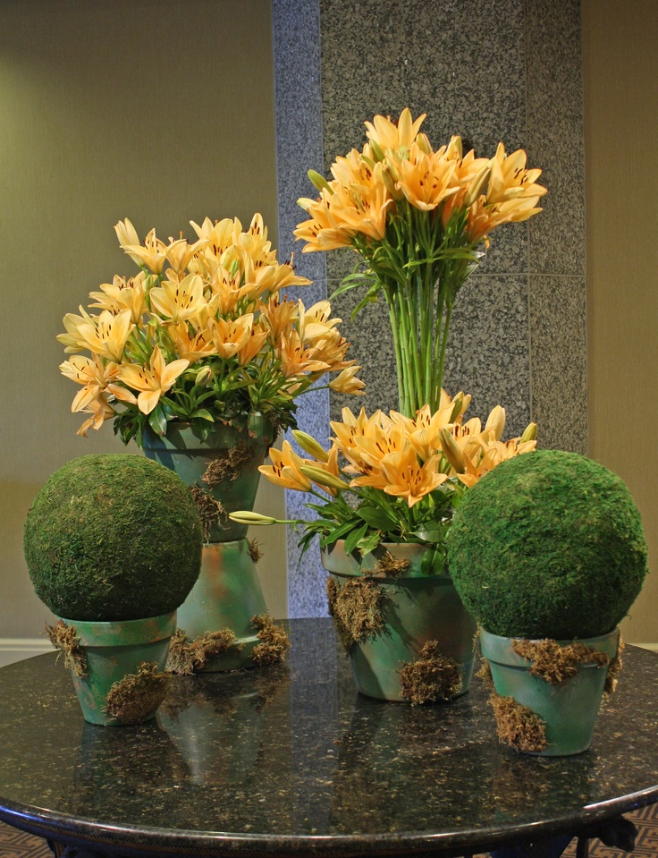 Sunny peach lilies grow in moss covered pots evoke feelings  of a country cottage garden