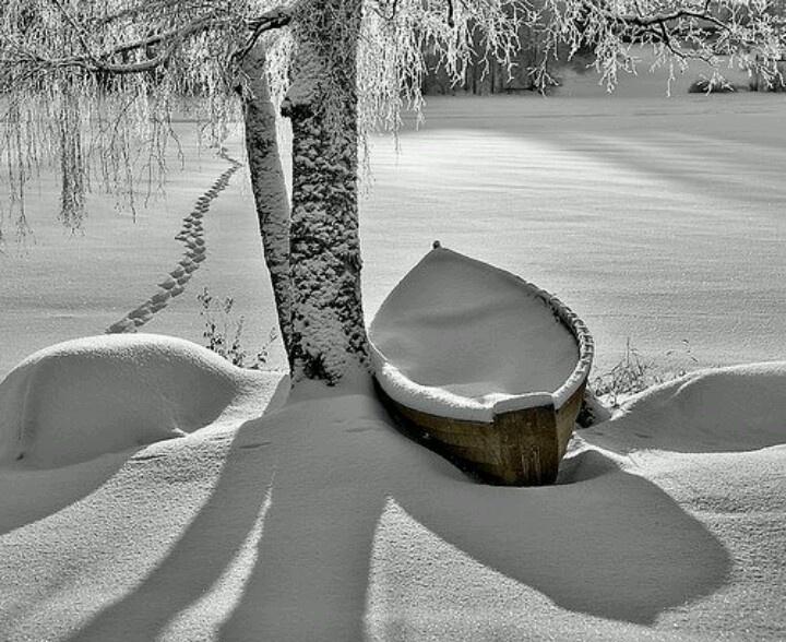 nieve bajo