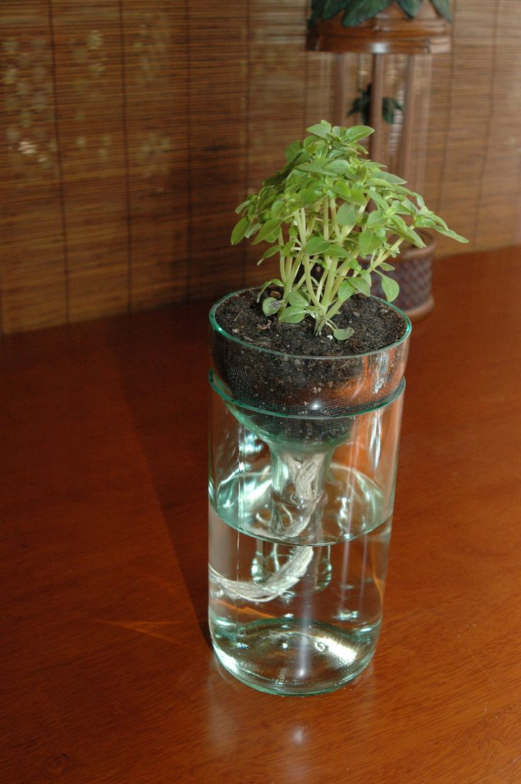 self watering planter made from recycled wine bottle. $20.00, via Etsy.