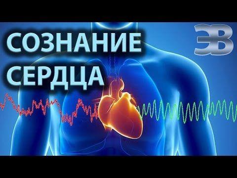 Разум и  сознание сердца. Научные факты - YouTube