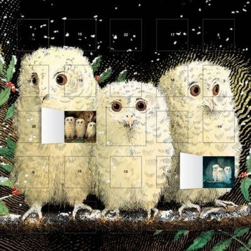 Owl-Babies-Advent-Calendar-with-Stickers