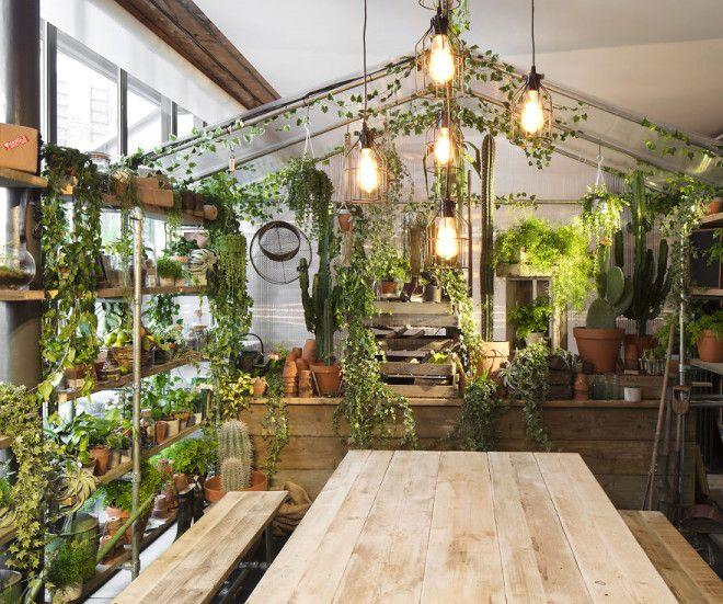 Organik bir iç bahçe ve sera da var; elbette ana teması yeşil.