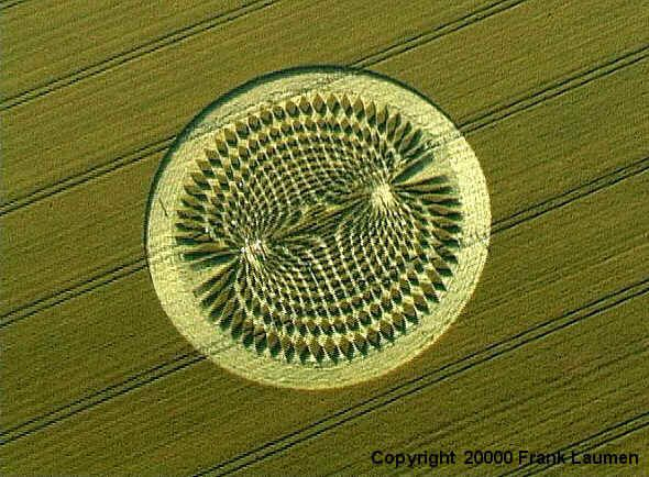 THE MAGNETIC FIELD - A CROP CIRCLE UNDER SCRUTINY FOR MEANING (2000)