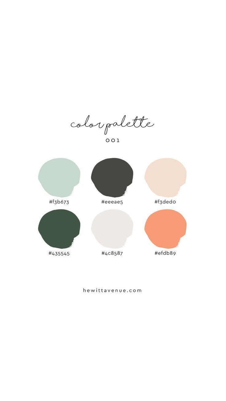 Branding color palette inspiration