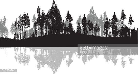 Vector Art : Pine Trees Silhouette Background