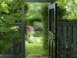 garden gate: Gardens Fence, The Doors, Landscape Design, Side Yard, Gardens Gates, Traditional Landscape, Gardens Doors, The Secret Gardens, Old Doors