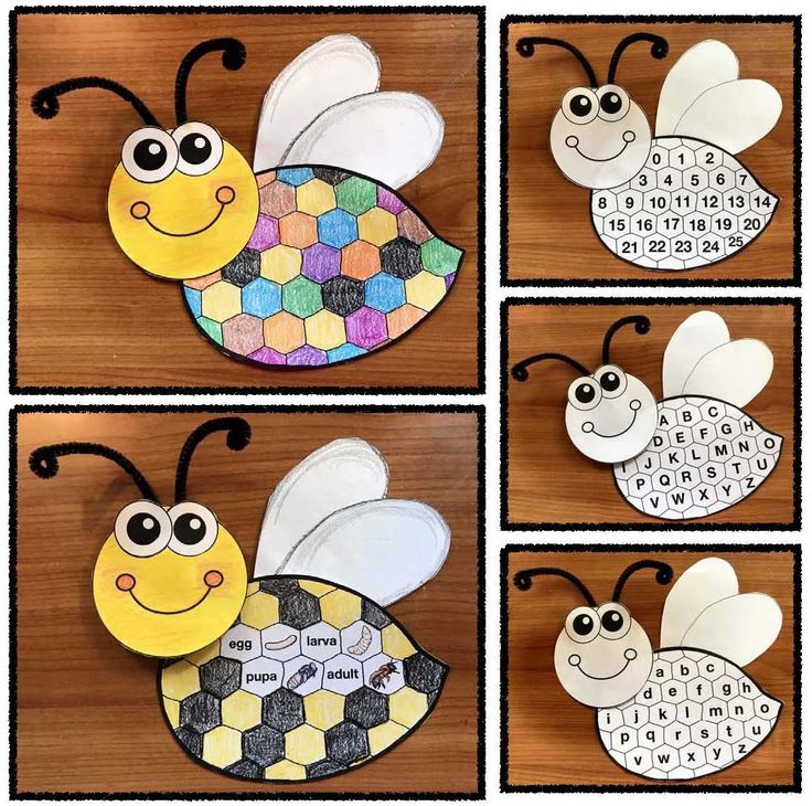 """Bug & Insect Activities: Versatile bee pattern. It's a """"color me"""" life cycle craft, as well as a whole group, """"I Spy"""" assessment game for letters & numbers. Cute. What a super-fun way to practice these standards. Completed projects make a sweet bulletin board too."""