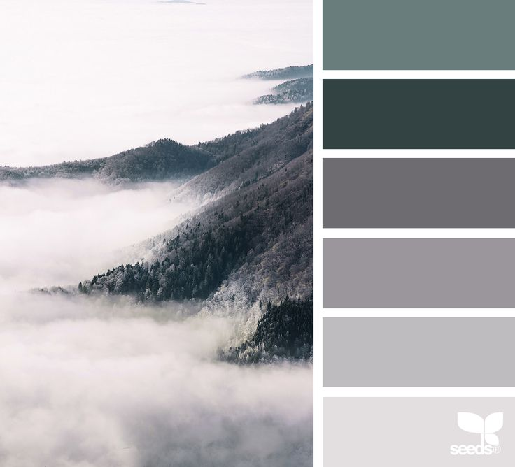 Foggy Tones via @designseeds  Neutral grey tones with dark green accent. Could use a dark blue, red or brown as well