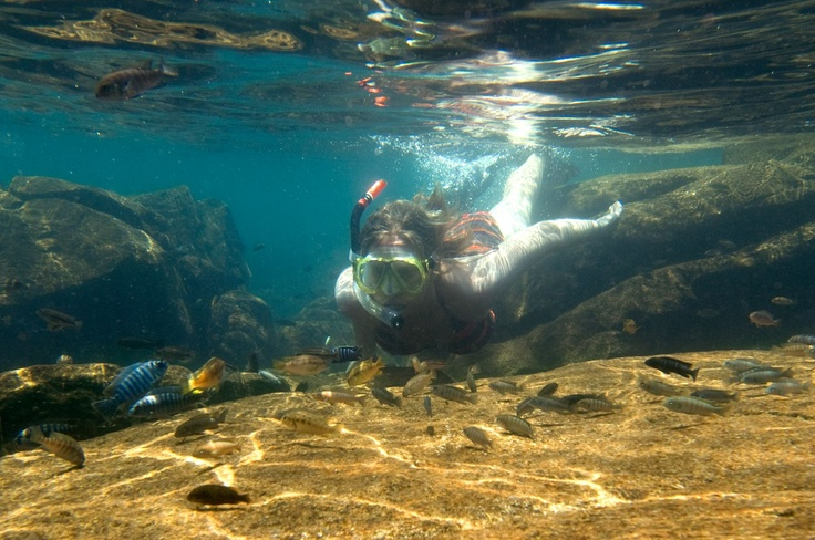 Snorkelling in the clear waters of Lake Malawi