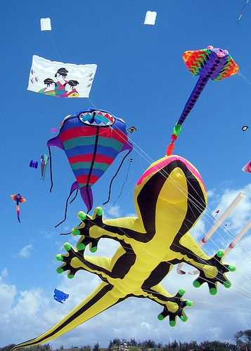 Sunny Kite Festival this Sunday! Are you as excited as we are?!?