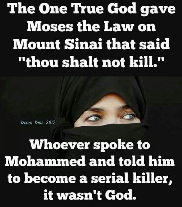 Hey what ever happened  to that....free will vs evil...is it really necessary to kill people really seriously why??????????????????????,