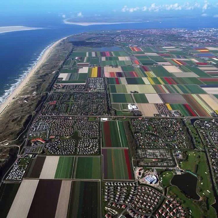 Den Helder met de bollenvelden vanuit de lucht