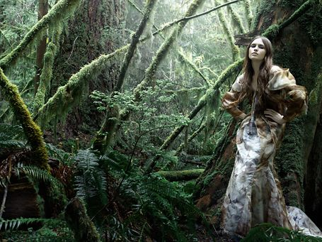 This is sort of the feel that I was thinking. Dark, foggy, deep in a forest. High fashion.