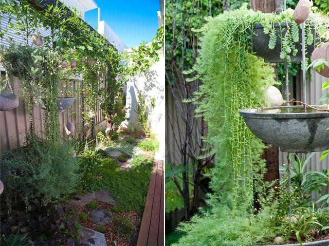 ideias sobre jardins : ideias sobre jardins:1000 ideias sobre Jardim Australiano no Pinterest