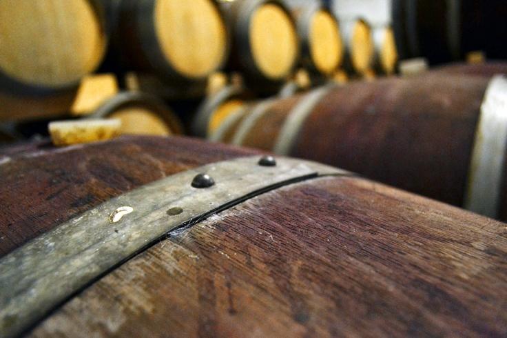 #Down2Earth Wine Barrels in Bonnievale Cellars