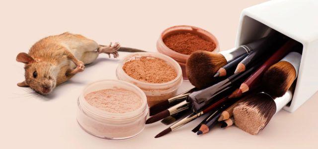 So erkennst du Kosmetik ohne Tierversuche