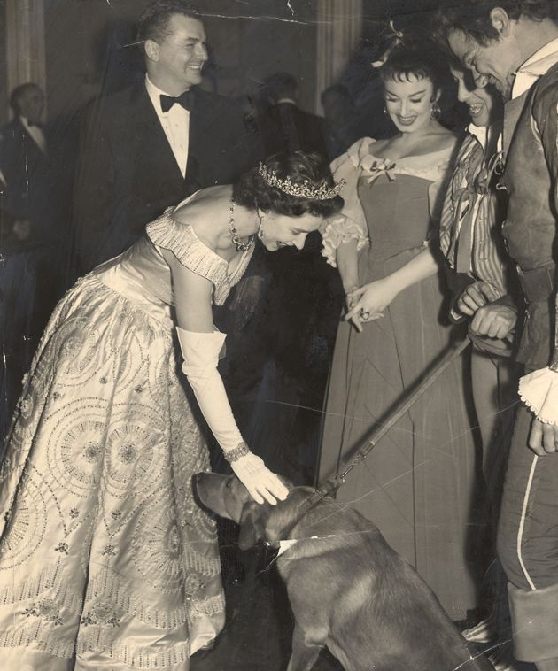 The Queen loves animals so much, that even as black tie events and balls, Elizabeth would break formalities to pet and interact with them!