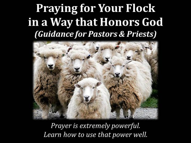 Praying for Your Flock in a Way that Honors God (Guidance for Pastors & Priests)