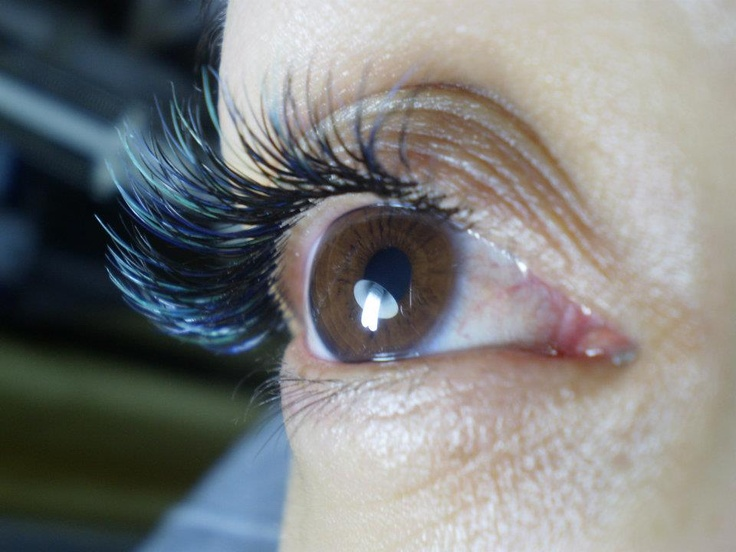 Lash extensions on pinterest warm permanent hair removal and mink
