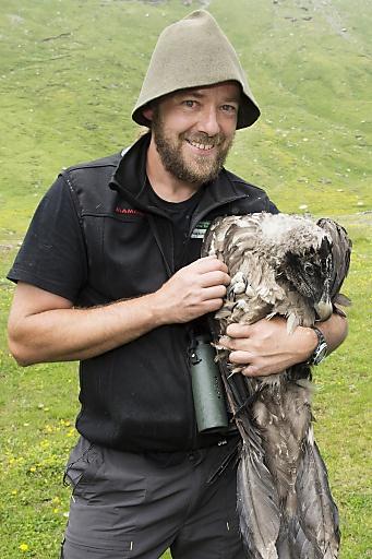 Seit über 20 Jahren wird der größte Greifvogel Europas, der Bartgeier, wieder in den Alpen angesiedelt. | Fotograf: Daniel Zupanc | Credit:NPHT | Mehr Informationen und Bilddownload in voller Auflösung: http://www.ots.at/presseaussendung/OBS_20120624_OBS0002