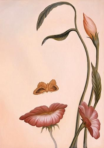 cool art illustration / illusion