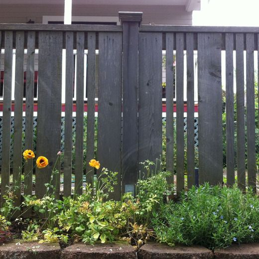 Horizontal Fence Diy: 17 Best Images About Fence Ideas On Pinterest