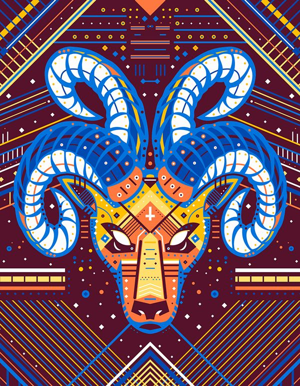 Symmetric Animals on Behance