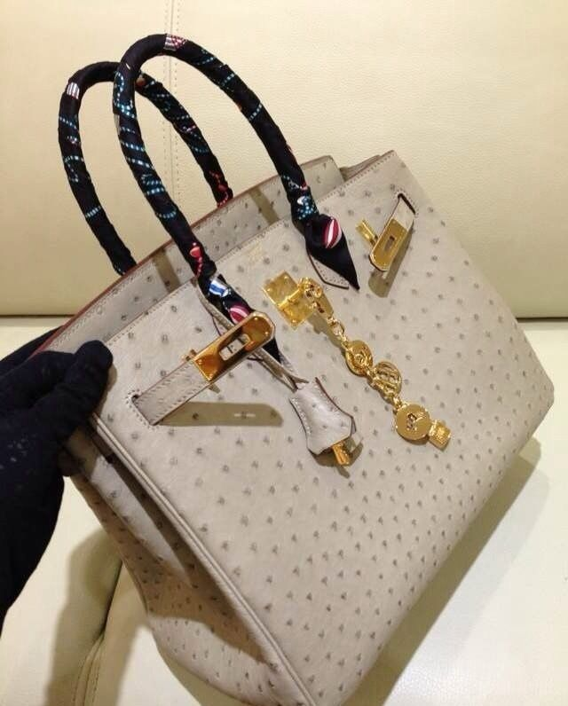REPLICA CHANEL BAGS OUTLET | Hermes Birkin, Ostriches and Hermes