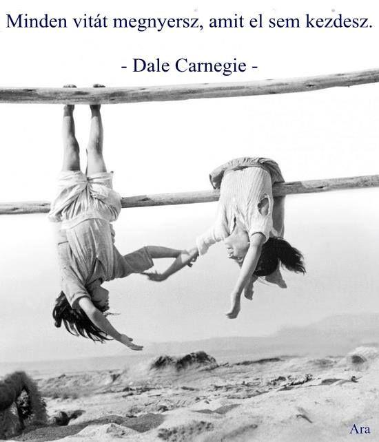 Dale Carnegie gondolata a vitákról. A kép forrása: Ara Rauch közösségi oldala # Facebook