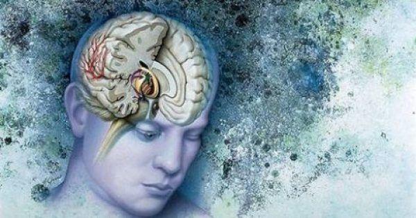 Υγεία - Το έχουμε επαναλάβει πολλές φορές, οπότε μάλλον θα γνωρίζετε, ότι η σεροτονίνη αποτελεί έναν από τους σημαντικότερους νευροδιαβιβαστές που στέλνει μηνύματα